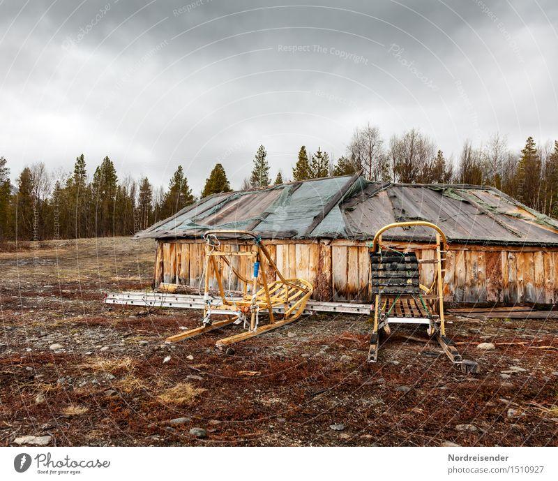 Hundeschlitten Abenteuer Ferne Freiheit Landschaft Wolken Klima Klimawandel schlechtes Wetter Wald Dorf Menschenleer Haus Hütte Bauwerk Gebäude Architektur