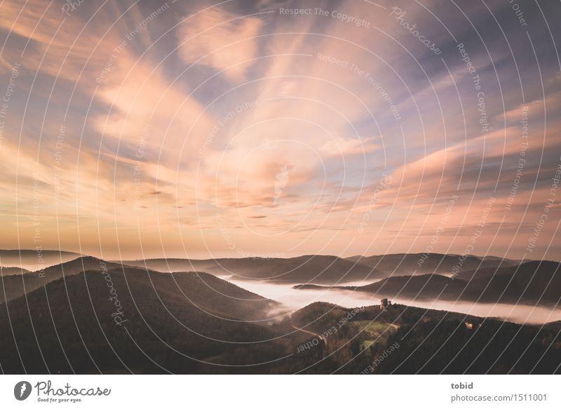 Morgendämmerung Natur Pflanze Landschaft Einsamkeit Wolken Ferne Wald Wiese Wege & Pfade Horizont Feld Nebel frei Idylle einzigartig Schönes Wetter