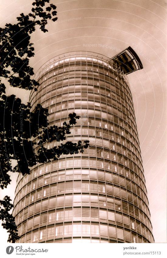 hochhaus Baum Architektur Hochhaus