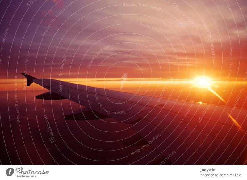 Und es wurde Licht Himmel Sonne Ferien & Urlaub & Reisen Wolken Leben Sonnenaufgang orange Flugzeug fliegen Luftverkehr Tragfläche Flughafen Abdeckung aufwachen