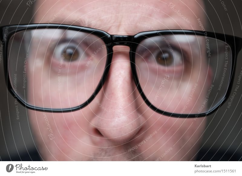 Am Nerdigsten Mensch Jugendliche Mann Junger Mann Gesicht Erwachsene Stil Schule Arbeit & Erwerbstätigkeit Büro lernen Studium Brille Bildung Beruf Erwachsenenbildung