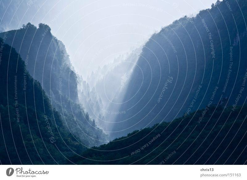 nebeltal blau ruhig Wald Berge u. Gebirge Landschaft Umwelt träumen Stimmung Nebel Energie Idylle Aussicht eng Schlucht Sonnenstrahlen Naturwuchs