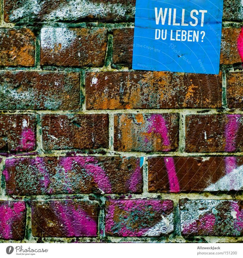 Am Scheideweg Stadt Graffiti Wand Mauer Schriftzeichen Buchstaben Vergänglichkeit Backstein Lebensfreude Fragen Tod Grafik u. Illustration Sterbehilfe