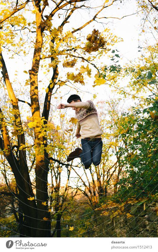 Springe in die Ahornblätter Natur Ferien & Urlaub & Reisen Jugendliche Baum Junger Mann Blatt Freude Leben Gefühle Herbst Stil Spielen Lifestyle Feste & Feiern