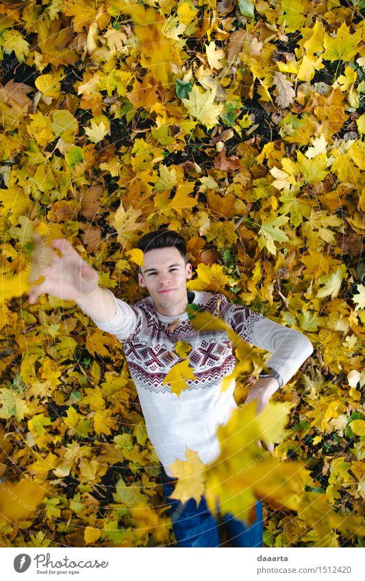 Herbstspiele Natur Ferien & Urlaub & Reisen Pflanze Blatt Freude Leben Gefühle Stil Spielen Lifestyle Garten Freiheit Stimmung maskulin Park