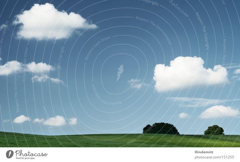 Grün und blau ... Himmel Baum Sommer ruhig Wolken Erholung Wiese Wärme Kraft Feld Wellen Hügel Konzentration