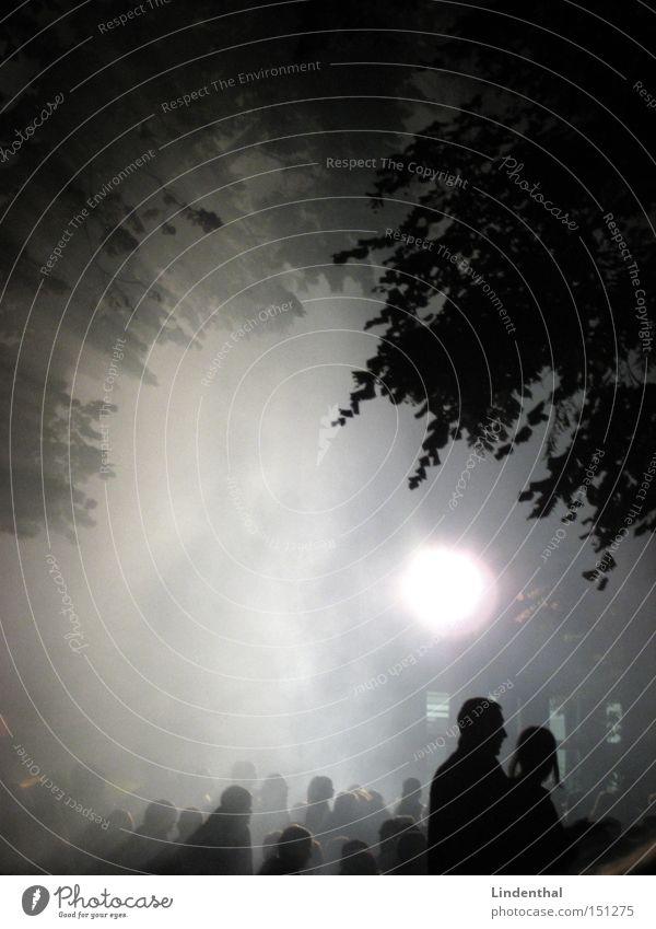 Fog of Concert Mensch Baum Sonne Blatt Musik Menschengruppe Paar Feste & Feiern Nebel paarweise Konzert Publikum Nebelbank