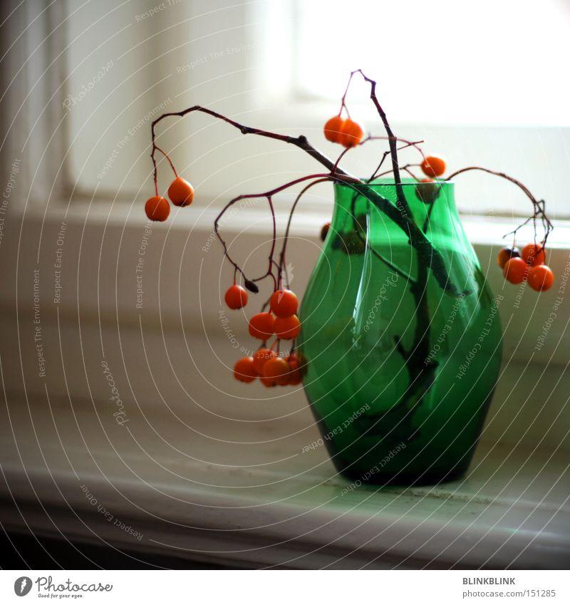 komplementär grün Winter Fenster orange Glas Glas rund Dekoration & Verzierung Vergänglichkeit Kugel Stillleben Zweig Vase Fensterbrett Vogelbeeren