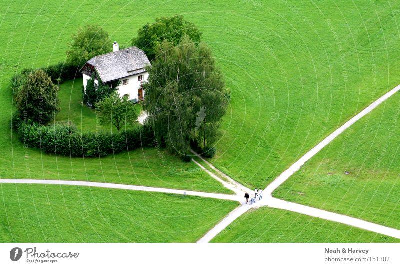 Mein Haus im Grünen grün Salzburg Wege & Pfade Wiese abgelegen Einsamkeit Straßenkreuzung Wegkreuzung Exil