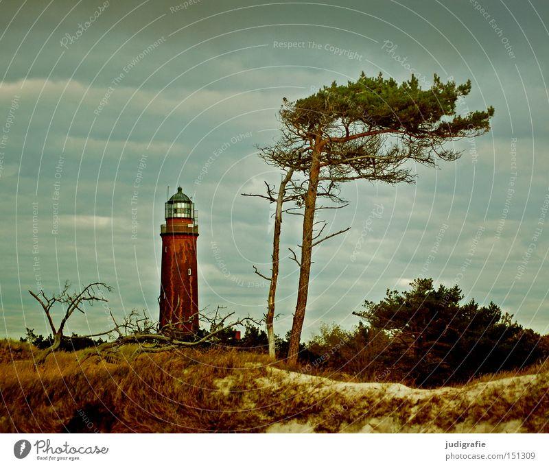 950 | Aussichten Leuchtturm Meer Küste Windflüchter Baum Darß Weststrand Strand Stranddüne Himmel Landschaft Ostsee Ferien & Urlaub & Reisen Erholung Farbe