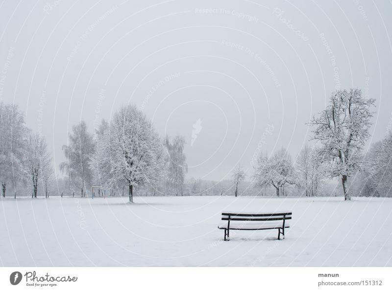 Winterzeit Himmel Natur Baum ruhig Einsamkeit Ferne Erholung kalt Schnee Landschaft Garten Park Eis Nebel Frost