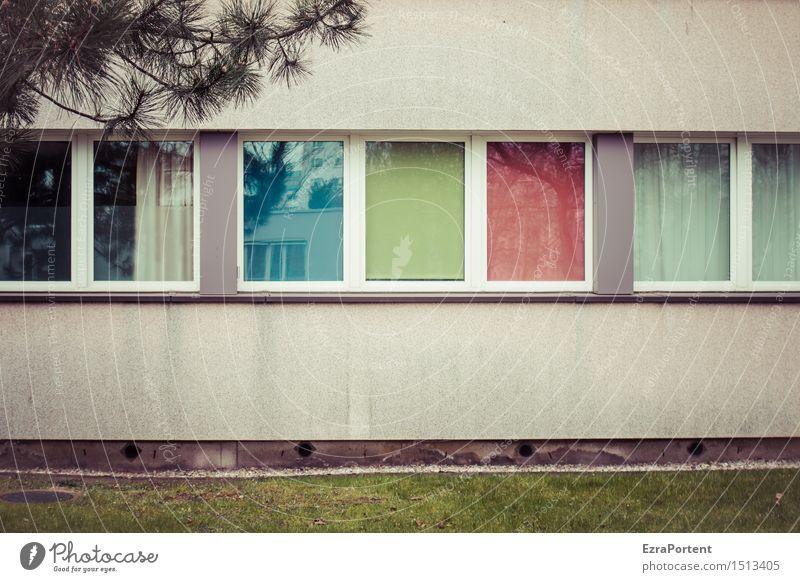 5 1/2 Fenster, 3 Rollo`s, 3 Farben blau grün Baum rot Haus Wand Architektur Gras Gebäude Mauer grau Linie Fassade Häusliches Leben trist