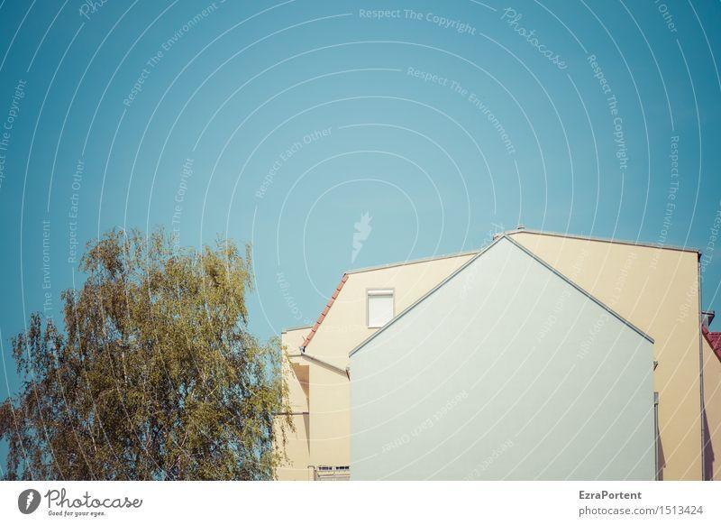 mit der Nase im Grünen Design Häusliches Leben Haus Himmel Wolkenloser Himmel Schönes Wetter Bauwerk Architektur Mauer Wand Fassade Fenster Dach hell blau gelb