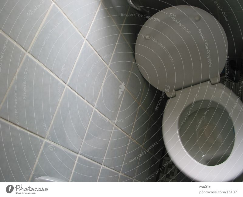myWC Toilette Häusliches Leben kacka Urin fekalien Kot Ausscheidungen