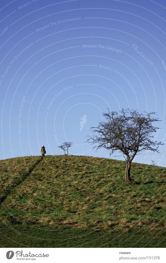 wanderer Baum Winter Landschaft Wege & Pfade wandern Sträucher Spaziergang Hügel Fußweg Märchen Erzählung Kulisse