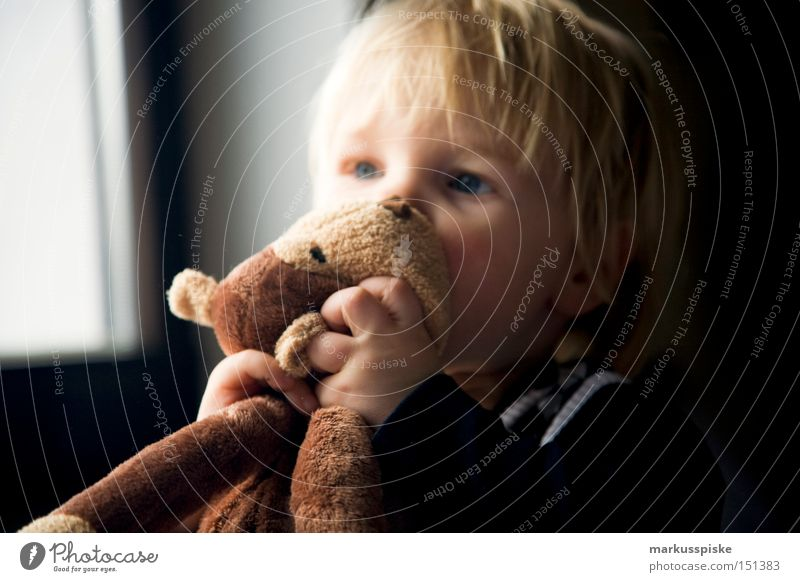 kuschel tier Kind Kleinkind Kuscheln Plüsch Tier Liebkosen Gefühle Kindergarten Vorschule festhalten beißen Küssen Freude Liebe