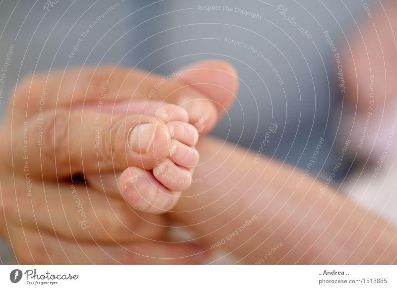 Babyfüsschen 2 Hand Freude Wärme Liebe Familie & Verwandtschaft Glück Fuß Zusammensein Freundschaft Zufriedenheit Fröhlichkeit Finger Lebensfreude