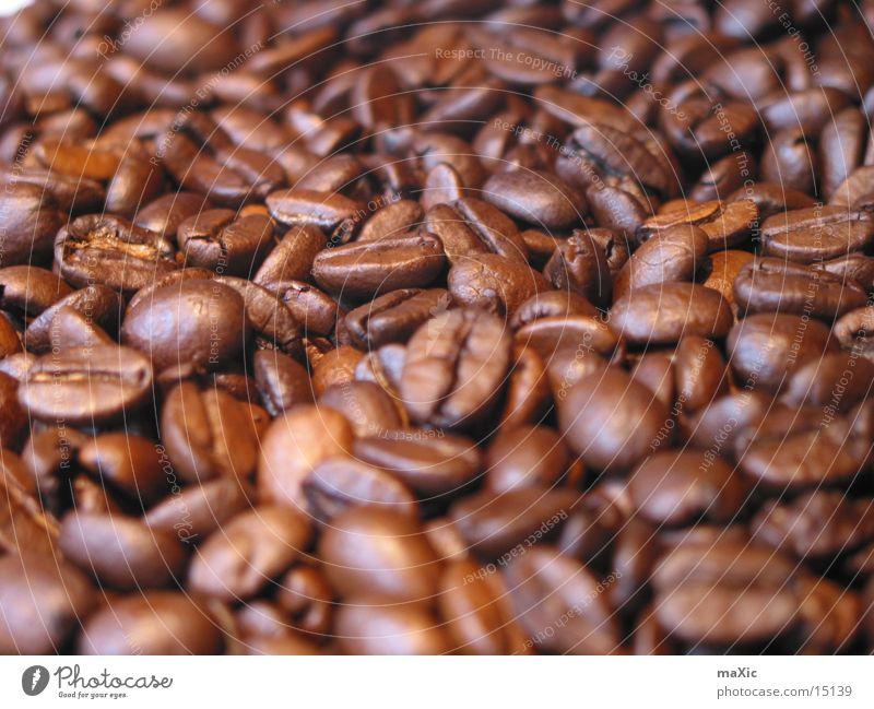Kaffeebohnen Ernährung Lebensmittel Stimmung braun nah genießen lecker harmonisch Espresso Hülsenfrüchte Bohnen aromatisch Koffein bitter