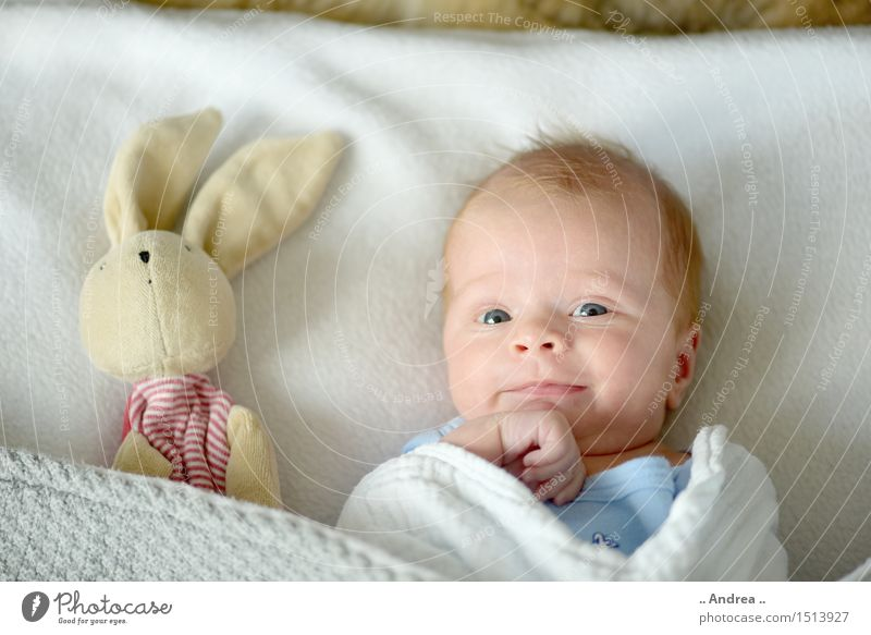 Kuckuck 2 feminin Kind Baby Familie & Verwandtschaft Paar 1 Mensch 0-12 Monate beobachten liegen Spielen Fröhlichkeit Zusammensein Glück Vertrauen Sicherheit