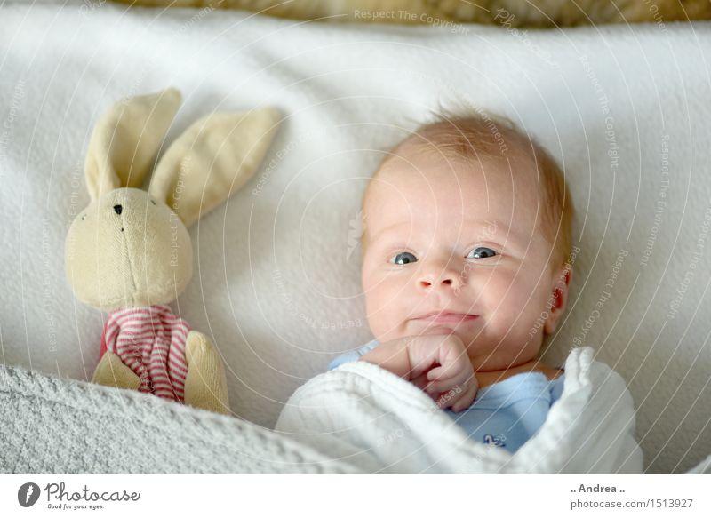Kuckuck 2 Mensch Kind Liebe feminin Spielen Familie & Verwandtschaft Glück Paar Zusammensein Freundschaft liegen Fröhlichkeit Baby Lebensfreude beobachten Schutz