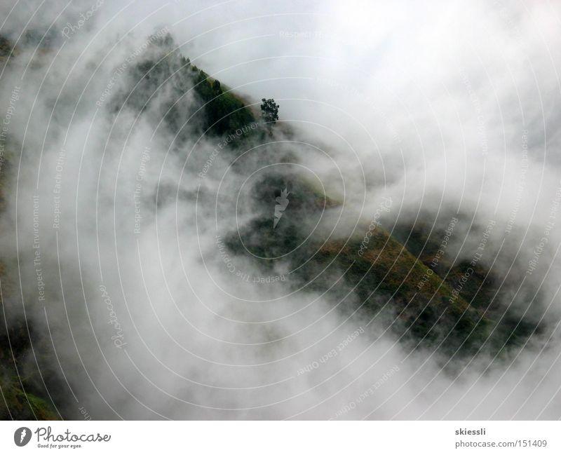 Nebelmeer Natur Himmel ruhig Wolken Einsamkeit Herbst Berge u. Gebirge Traurigkeit Hoffnung Aussicht Schutz Decke unberührt verhüllen Lichtblick