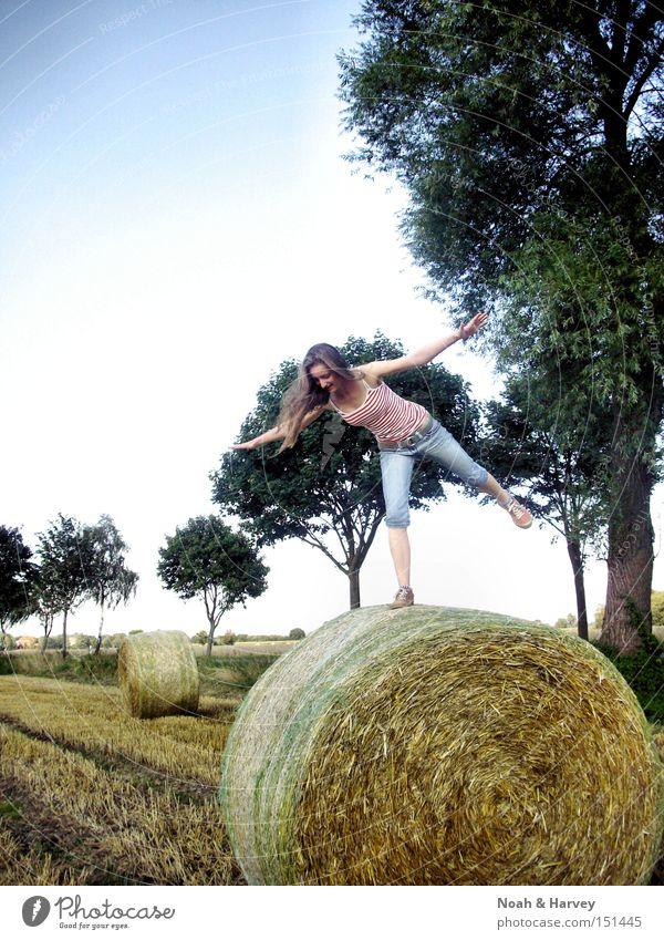 Balanceakt Sommer Zufriedenheit Baum Himmel Junge Frau Kontrast Fröhlichkeit Freude Ausgelassenheit
