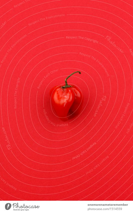 Jammy Chilischote auf Rot Kunst Kunstwerk ästhetisch rot Chiliernte Schote knallig Scharfer Geschmack Aggression Paprika lecker Würzig Design gestalten Farbfoto