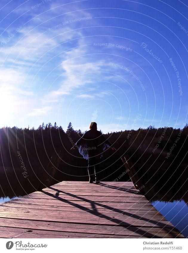 ... am See Frau Natur Wasser Sonne Sommer ruhig Wolken Erholung Herbst Landschaft Steg Teich Umweltschutz Gewässer