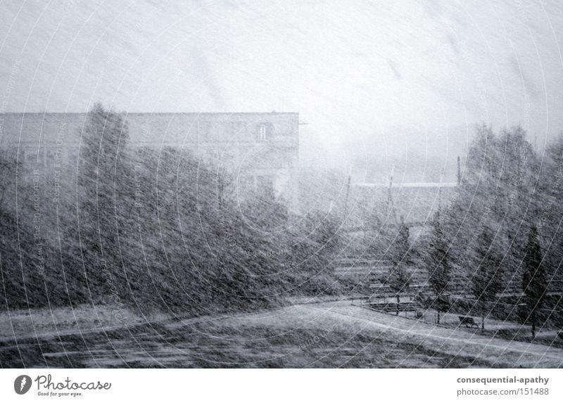 schnee schraffur... weiß Winter kalt Schnee Traurigkeit Eis Sturm