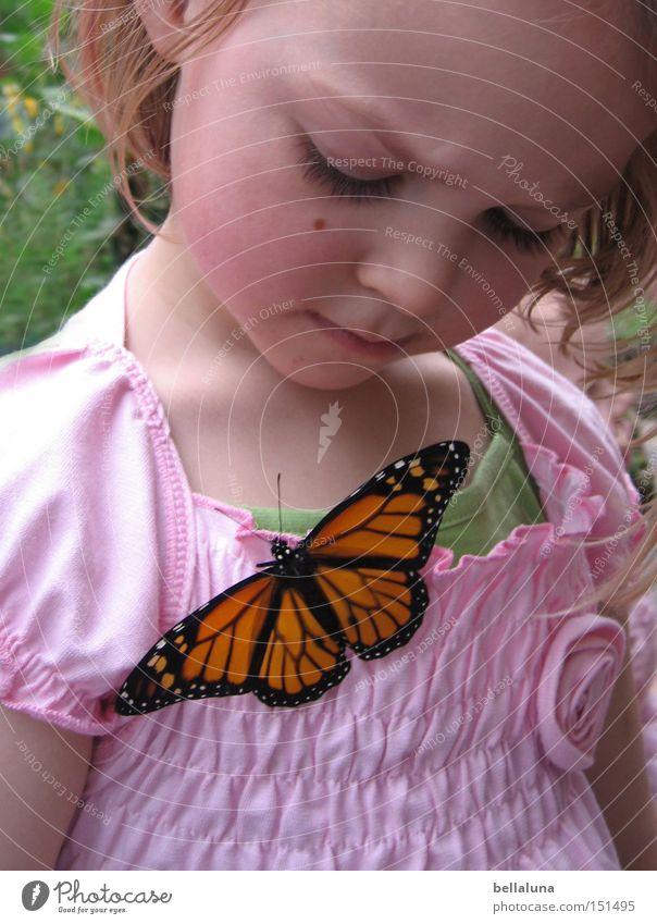 kleine Wunder Kind Pflanze Mädchen Freude Leben Gefühle Glück blond sitzen niedlich beobachten Tragfläche Schmetterling Fühler Wunder