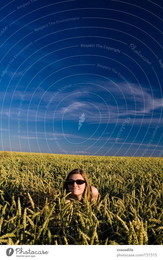 Versteckspiel Frau schön Himmel Sommer Wolken Spielen Haare & Frisuren Kopf Feld verstecken Sonnenbrille Weizen ducken Pol- Filter