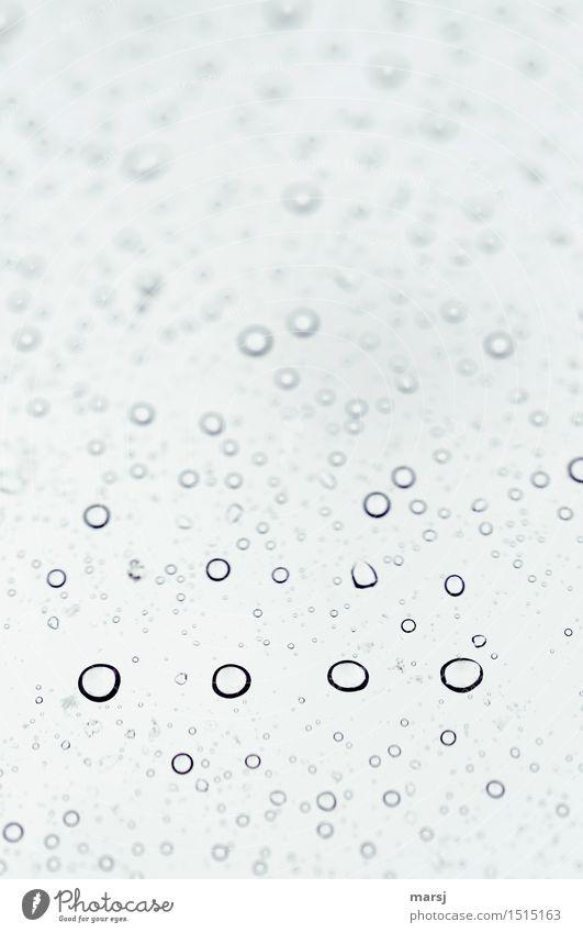 s-0000- viele Nullen Wassertropfen schlechtes Wetter Kugel Tropfen aufgereiht einfach nah nass rund Hintergrundbild minimalistisch reduziert Verlauf trüb