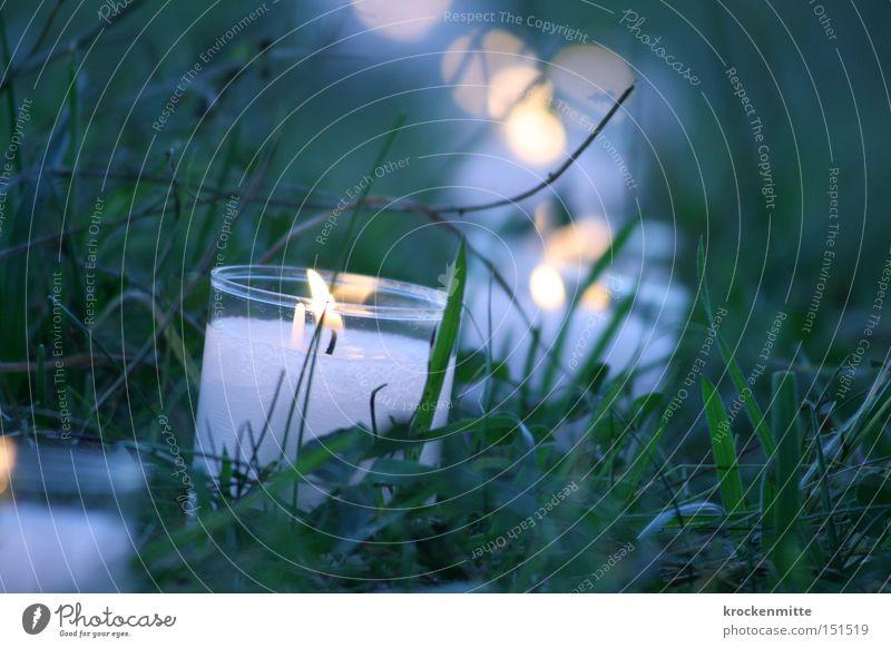 Lichtergruss Kerze brennen Beleuchtung Veranstaltungsbeleuchtung Wärme Flamme Hoffnung Romantik Vergänglichkeit Wachs Reihe Abend Kerzendocht