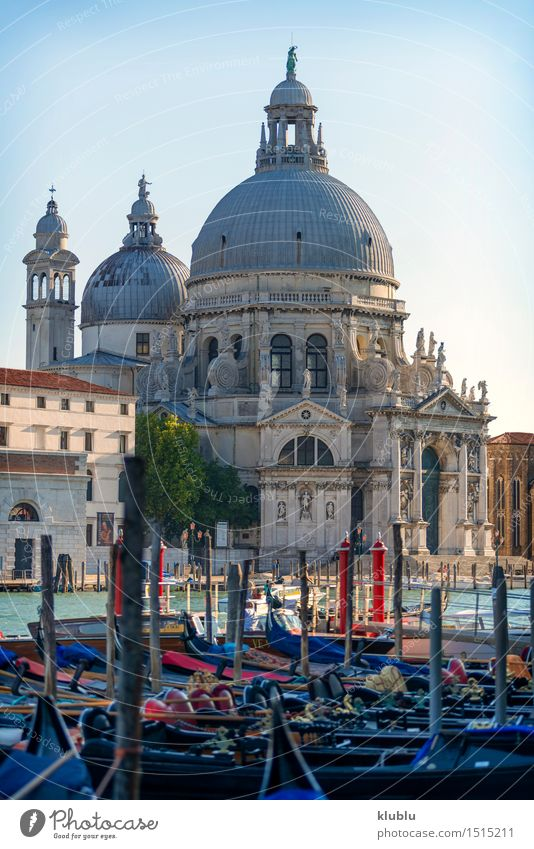 Ansicht von Venedig, Italien Meer Insel Kleinstadt Stadt Kirche Gebäude Architektur Fassade Wasserfahrzeug Vogel historisch maritim Religion & Glaube Aussicht
