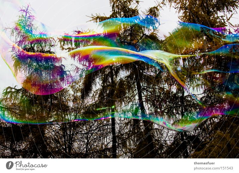 Tagtraum Freude Wolken Farbe Glück fliegen Luftverkehr Seifenblase Schweben Verliebtheit Phantasie Illusion Wunschvorstellung platzen Denken Blase