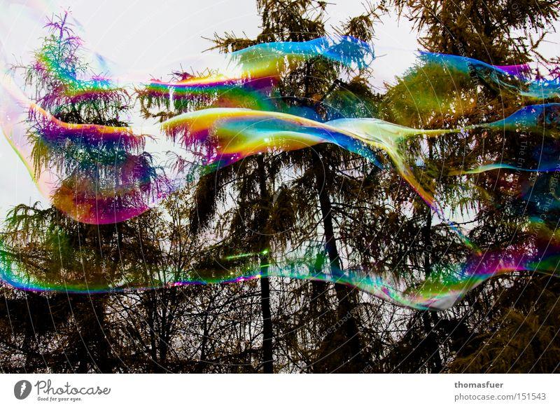 Tagtraum Illusion Wunschvorstellung platzen fliegen Schweben Farbe flüchtig Phantasie Wolken Verliebtheit Glück Freude Seifenblase Luftverkehr