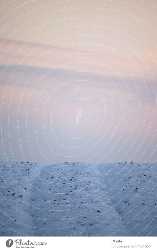 Kein Weg zu weit Himmel Winter kalt Schnee Wege & Pfade Landschaft Feld Spuren Furche Fahrbahn bedeckt Pastellton Traktorspur