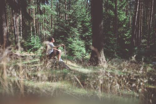 Wandermai(d) Mensch Frau Natur grün Sommer Baum Erholung ruhig Wald Erwachsene Umwelt Leben feminin Glück Freiheit träumen