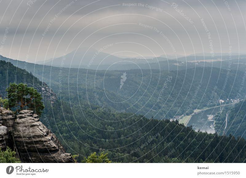 Blick nach Osten Himmel Natur grün Sommer Baum Landschaft Wolken ruhig Ferne Wald Berge u. Gebirge Umwelt Freiheit Felsen Nebel hoch