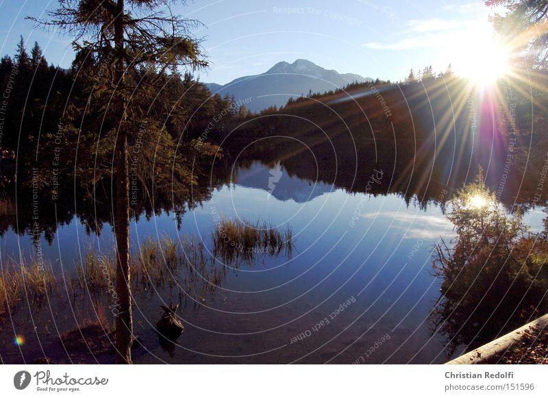 ... am See Teich Wasser Steg Sonne Herbst Sommer Gewässer Erholung Landschaft Küste Seeufer Flussufer Baum ruhig Schwimmen & Baden Natur