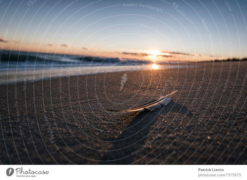 Federleicht schön Ferien & Urlaub & Reisen Abenteuer Freiheit Sonne Strand Meer Wellen Umwelt Natur Landschaft Sand Himmel Wolken Sommer Klima Klimawandel