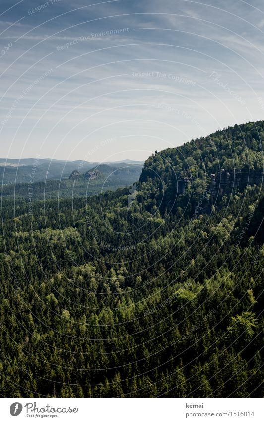 Heller Wald, dunkler Wald Umwelt Natur Landschaft Pflanze Himmel Wolken Sonne Sonnenlicht Sommer Schönes Wetter Baum Grünpflanze Hügel Felsen Berge u. Gebirge