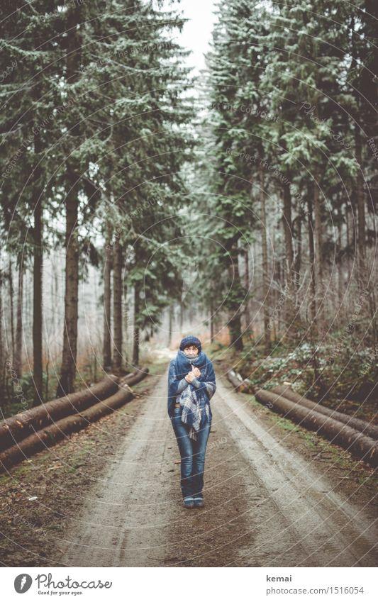 Blaukäppchen Mensch Frau Natur blau Baum Landschaft Einsamkeit Winter Wald Erwachsene Leben Senior Wege & Pfade feminin Stil Lifestyle
