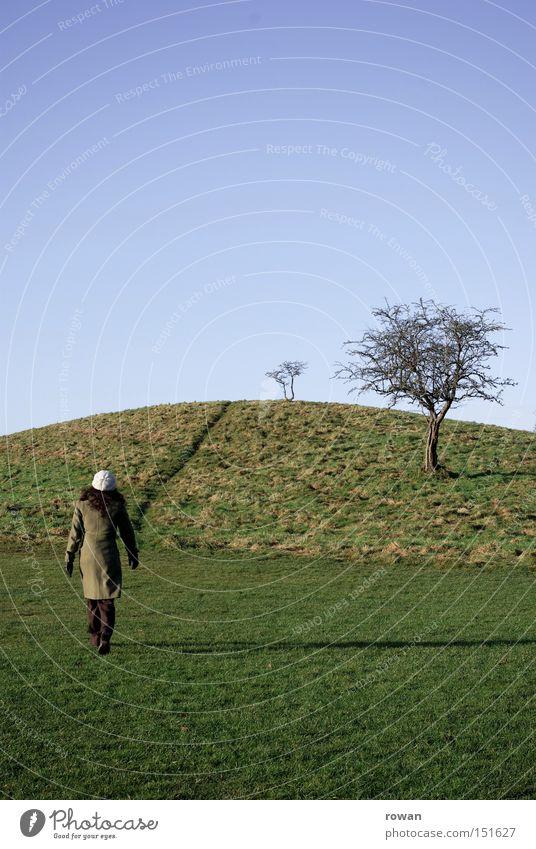 wanderer 2 Baum Winter Landschaft Wege & Pfade wandern Sträucher Spaziergang Hügel Fußweg Märchen Erzählung
