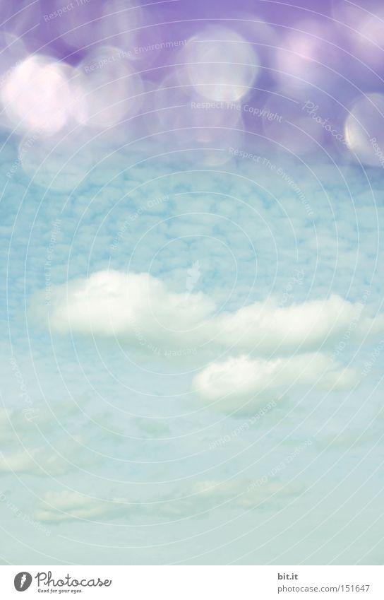 VÖGEL IM WASSER   FISCHE AM HIMMEL   Natur Landschaft Luft Himmel Wolken Horizont Sommer Klima Schönes Wetter glänzend träumen fantastisch Kitsch blau Stimmung