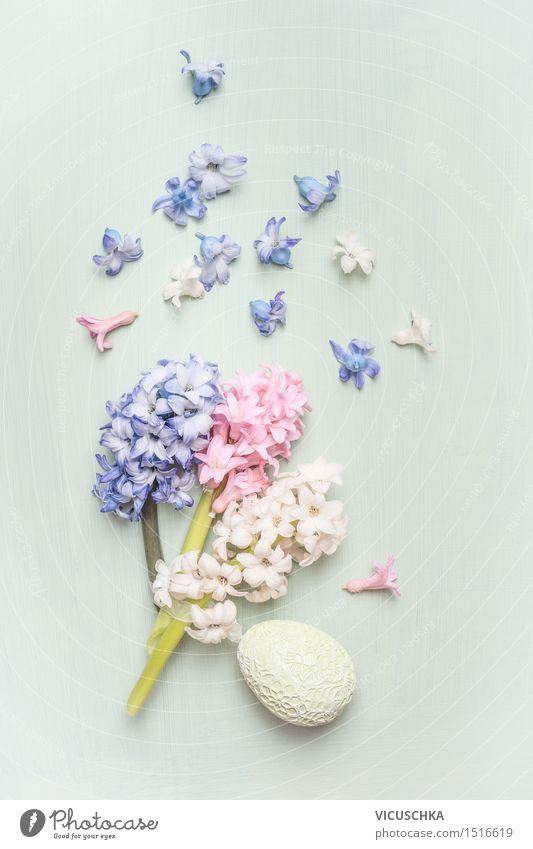 Ostern Dekoration mit Hyazinthen Blumen Natur Pflanze blau grün weiß Blatt Freude Innenarchitektur Blüte Stil Feste & Feiern rosa Wohnung Design
