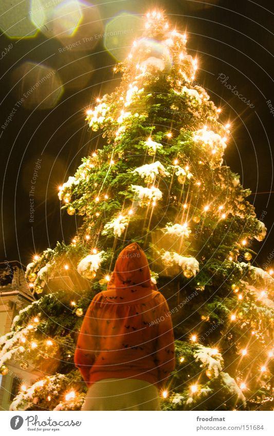 rotkäppchen und der liebe baum Frau Weihnachten & Advent schön Baum Winter Schnee Mensch Nacht Beleuchtung gold Weihnachtsbaum Märchen Lichterkette Rotkäppchen