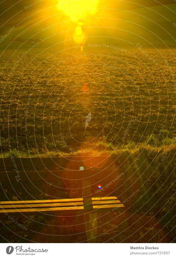 Sonnenbank Feld Gegenlicht Spaziergang wandern ruhig Gelassenheit Natur Wiese Sonnenuntergang Pause Freude Bank linsenreflex