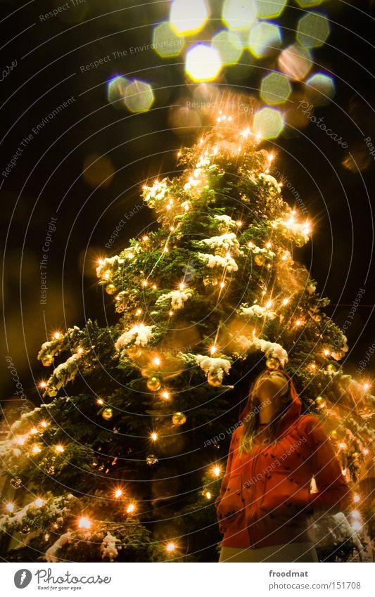 es schneielet es beielet Gold Weihnachten & Advent Lichterkette Baum Frau schön Märchen Winter Beleuchtung Veranstaltungsbeleuchtung Nacht Schnee Weihnachtsbaum