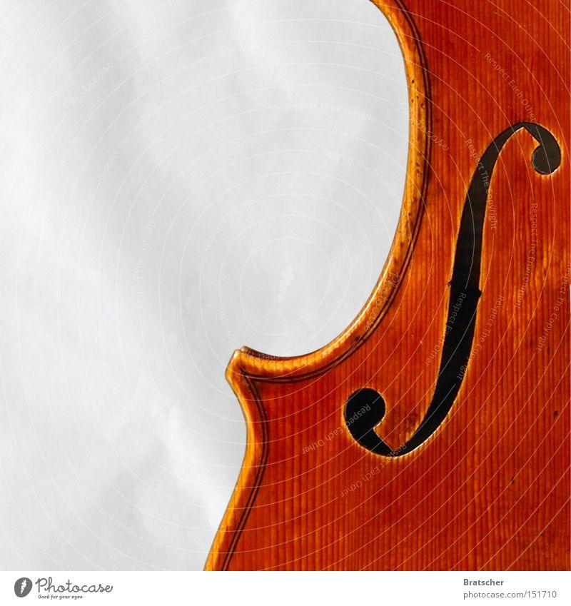 Komposition V Musik hell Kunst ästhetisch Musiker gut Musikinstrument Klassik Veilchengewächse Orchester Kunsthandwerk Blume musizieren Bratsche Symphonie